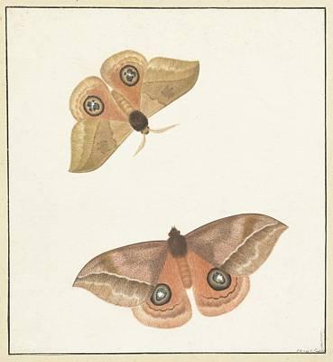 Twee Vlinders Art Print by MotionAge Designs