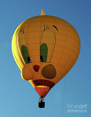 Photograph - Tweedy Bird Hot Air Balloon by Diane E Berry