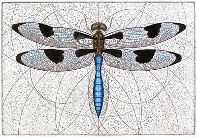 Mixed Media - Twelve Spotted Skimmer by Charles Harden
