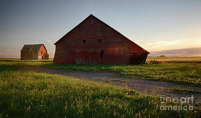 Photograph - Twice Is Nice by Idaho Scenic Images Linda Lantzy