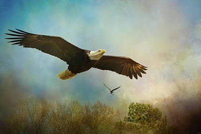 Photograph - Twice The Power Bald Eagle Art by Jai Johnson