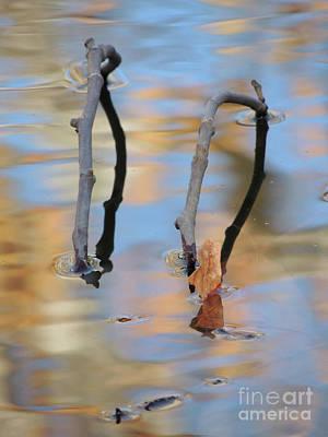 Photograph - Twig Bridge by Robert Ball