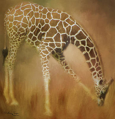 Photograph - Twiga Kiswahili For Giraffe by Wallaroo Images