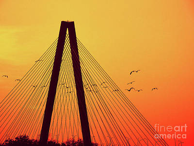 Photograph - Twilight At Ravenel Bridge by Scott Cameron