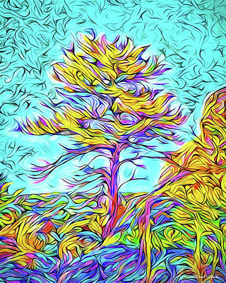 Digital Art - Twilight Autumn Glow - Colorado Mountain Pine by Joel Bruce Wallach