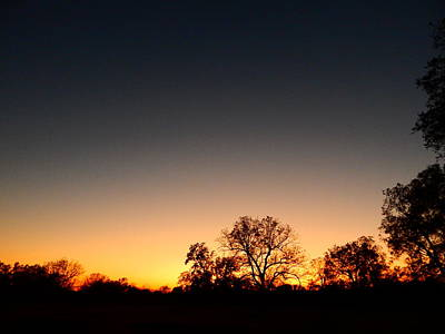 Photograph - Twilight Comes Softly by Virginia Kay White