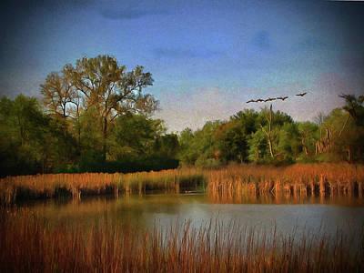 Photograph - Twilight Flight by Cedric Hampton