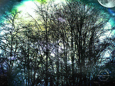 Photograph - Twilight Forest Of The Faerie Realm by Absinthe Art By Michelle LeAnn Scott
