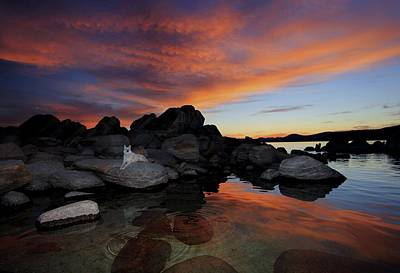 Photograph - Twilight Gold by Sean Sarsfield