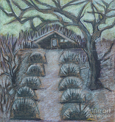 Art Print featuring the drawing Twilight In Garden, Illustration by Ariadna De Raadt