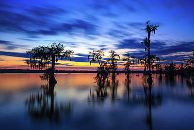 Photograph - Twilight On Lake Martin Swamp by Tim Stanley