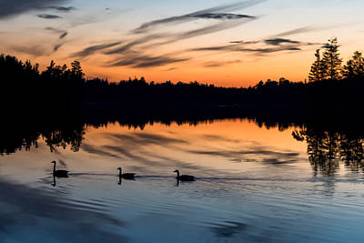 Photograph - Twilight Lake Swim New Jersey by Terry DeLuco