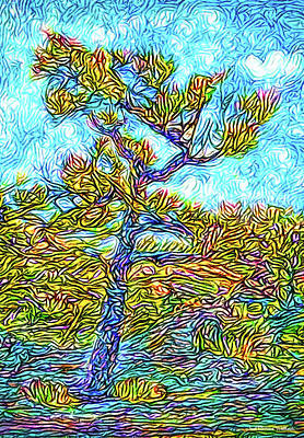 Digital Art - Twilight Mountain Pine - Colorado by Joel Bruce Wallach