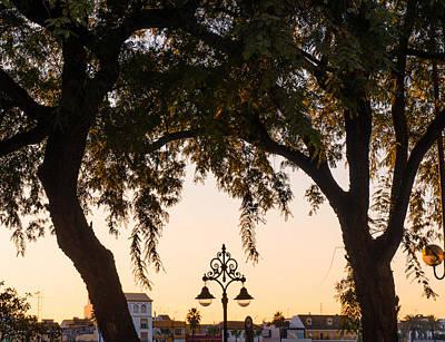 Photograph - Twilight On Guadalquivir by Andrea Mazzocchetti