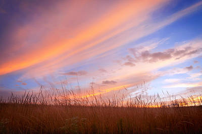 Pennypack Photograph - Twilight On The Grasslands by David Lamb