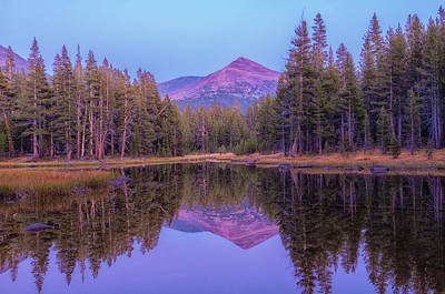Photograph - Twilight Reflection by Jonathan Nguyen