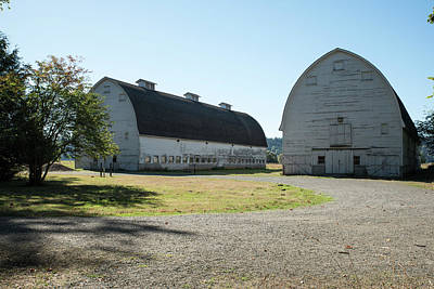 Photograph - Twin Barns At Nisqually by Tom Cochran