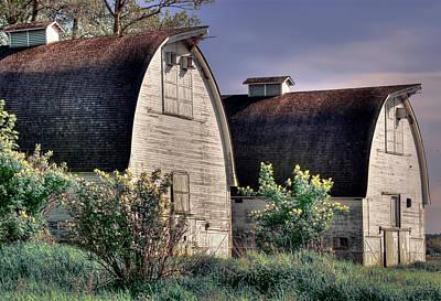 Twin Barns, Nisqually, Wa Art Print by Greg Sigrist