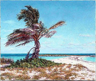 Painting - Twin Cove Palm by Eddie Minnis