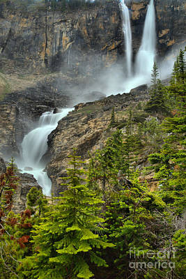 Photograph - Twin Falls Lush Portrait by Adam Jewell