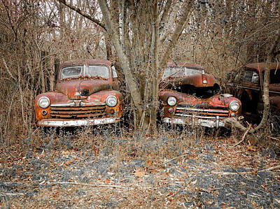 Photograph - Twin Fords by Tom and Pat Cory