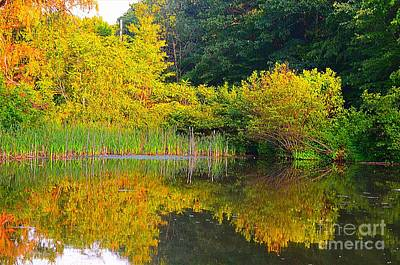 Photograph - Twin Lakes Park by Christopher Shellhammer