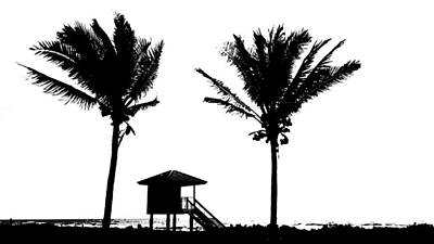 Photograph - Twin Palm Cut-out Delray Beach Florida by Lawrence S Richardson Jr