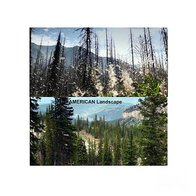 Twin Photos Awesome North American Mountains Photography See On Posters Pillows Curtains Duvet Cover Original