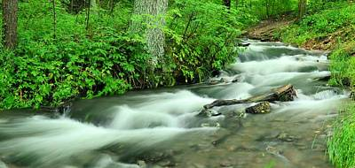 Photograph - Twin Springs Summer Panorama by Bonfire Photography