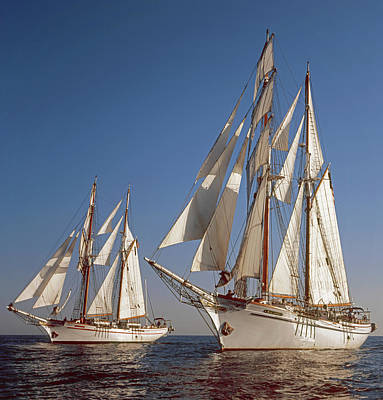 Photograph - Twin Tallships At Sea by Cliff Wassmann