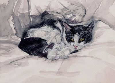 Twinkle The Cat Art Print by Chana Helen Rosenberg