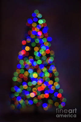 Photograph - Twinkle Tree by Jim And Emily Bush