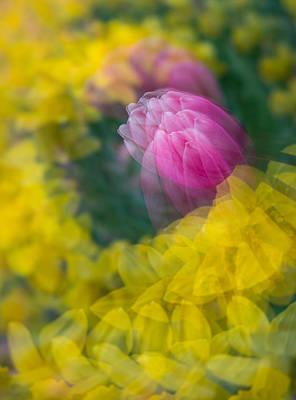 Photograph - Twirling  by Joye Ardyn Durham