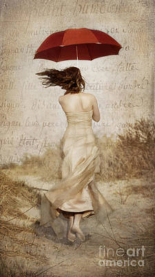 Photograph - Twirling Painted Lady by Alissa Beth Photography