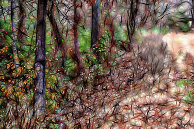 Photograph - Twirling Vines by Gina O'Brien