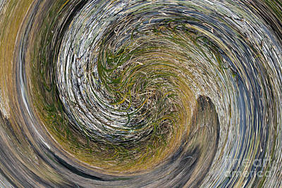 Twirls Of Grass Print by Brenton Cooper