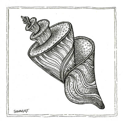 Beach Drawing - Twirly Shell by Stephanie Troxell