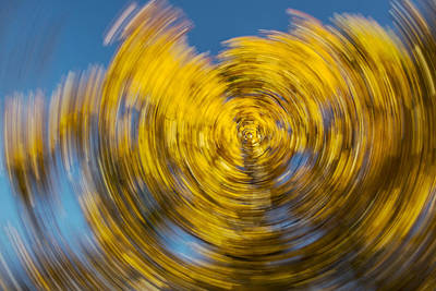 Photograph - Twisted Colors by Jeffrey Swank