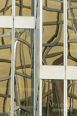 Photograph - Twisted Panes by Frank Townsley