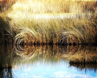 Twisted Reeds Art Print
