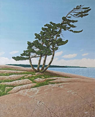 Painting - Twisted Rock Pine by Kenneth  Kirsch