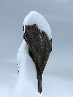 Photograph - Twisted Snow by Laurel Powell