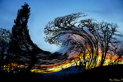 Photograph - Twisted Sunset by Ben Upham III