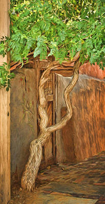 Photograph - Twisted Tree - Wall by Nikolyn McDonald