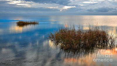 Two Alone In Pamlico Sound I Art Print by Dan Carmichael