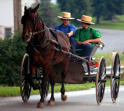 Two Amish Boy's In Buggy Original by Randy Matthews