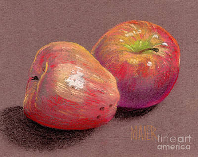 Still Life Drawing - Two Apples by Donald Maier