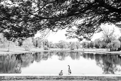 Art Print featuring the photograph Two At The Pond by Karol Livote