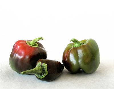 Photograph - Two Bell Peppers And One Pablano Pepper by David and Carol Kelly