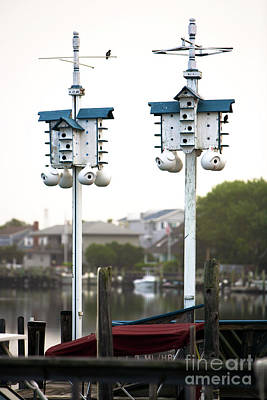 Photograph - Two Birdhouses by John Rizzuto